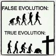Ekte evolusjon